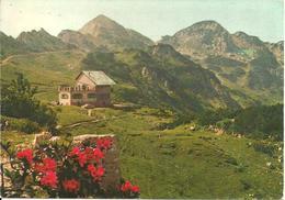 Rifugio Scalorbi (Trento) Panorama E Gruppo Del Carega, General View And Carega Group, Vue Generale, Gesamtansicht - Trento