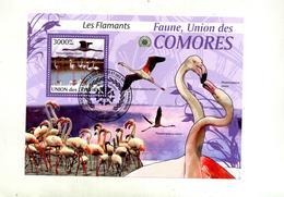 Bloc Flamant - Comores (1975-...)