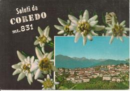 Coredo (Trento) Scorcio Panoramico E Stelle Alpine, Panoramic View, Vue Panoramique - Trento