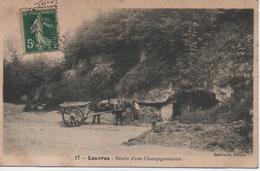 LOUVRES  ENTREE D'UNE CHAMPIGNONNIERE - Louvres