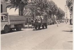Malaga - Route - Camion - Attelage - Photo 7 X 10 Cm - Places