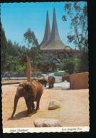 Los Angeles ZOO - Asian Elephant [AA29-1.889 - Stati Uniti