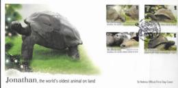 ST. HELENA, 2019,  TORTOISES, TURTLES, JONATHAN , THE WORLD'S OLDEST ANIMAL, 4v On FDC - Turtles