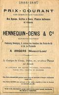Prix-courant HENNEQUIN-DENIS & Cie ANGERS : Oignons, Griffes à Fleurs, Plantes Bulbeuses Et Vivaces 1886 - 1887 - Agriculture