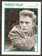 PORTRAIT DE STAR 1960 GRANDE BRETAGNE - ACTEUR TERENCE STAMP - ENGLAND ACTOR CINEMA FILM PHOTO - Fotos
