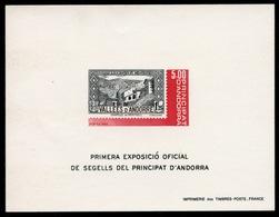 Andorre Bloc N°1 : Première Exposition Officielle De Timbres D'Andorre : épreuve De Luxe - Autres