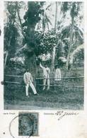 Colombo - Jack Fruit - Sri Lanka (Ceylon)