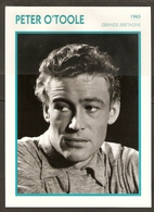 PORTRAIT DE STAR 1965 GRANDE BRETAGNE - ACTEUR PETER O'TOOLE - ENGLAND ACTOR CINEMA FILM PHOTO - Fotos