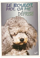 AN 584  , FANTASY POSTCARD , CPM  ,  DOGS  , - Chiens