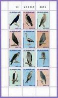 Surinam Suriname 2015.  Fauna. Birds. Vogels. - Suriname