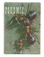Fourmis Par Alb. Raignier. Petit Atlas Payot, Lausanne. N° 5 - Encyclopaedia