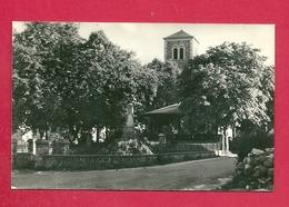 C.P. Érezée = Monument  Aux  Morts - Erezée