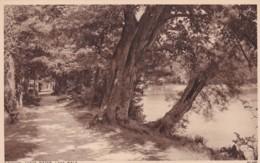 SWINDON - COATE WATER LAKE WALK - England