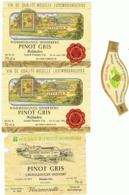 Lot De 3 étiquettes De Vin De La Moselle Luxembourgeoise - LUXEMBOURG -(b274) - Labels