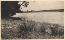 Virelles ,( Chimay  ),  Lac  , PHOTOCARTE   Juin  1952 ,  ( UNIQUE ) - Chimay