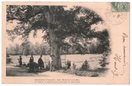 CPA 35 - MONTFORT SUR MEU (Ille Et Vilaine) - Institution St-Lazare, Chêne Du Bienheureux Grignon - Dos Simple - France
