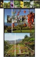 Portugal - Madeira - 2010 - 50 Years Of Botanical Garden In Madeira - Mint Stamp Set + 2 Souvenir Sheets - Madeira
