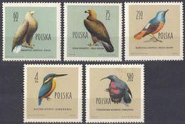 POLONIA - 1960 - Lotto Comprendente 5 Valori Nuovi Senza Gomma: Yvert 1075, 1076, 1078, 1079 E 1980. - 1944-.... Repubblica