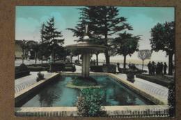 CASTELFIDARDO - GIARDINI PUBBLICI  -  BELLA - Italia
