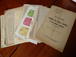 Lot Documents Agricoles Vigne Engrais 1925 à 1951 - Vieux Papiers