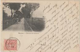 CPA     17  MARANS  CHEMIN DU CALVAIRE - France