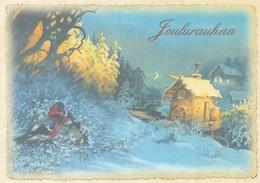 Birds - Bullfinches In Winter Landscape - Water Mill -. Raimo Partanen - Natale