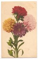 BF 29, OLD FANTASY POSTCARD , FLOWERS , MARTIN ROMMEL , MARO - Blumen