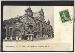 5154. VUE DES ETABLISSEMENTS MERCIER. LUXEMBOURG  . (recto Verso)  ANNEE . 1909.   COLL. DU CHAMPAGNE MERCIER . EPERNAY - Epernay