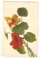BF 36, OLD FANTASY POSTCARD , FLOWERS , MARTIN ROMMEL , MARO - Blumen