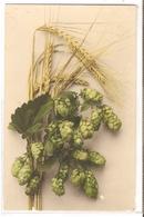 BF 41, OLD FANTASY POSTCARD , FLOWERS , MARTIN ROMMEL , MARO - Blumen