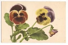 BF 42, OLD FANTASY POSTCARD , FLOWERS , MARTIN ROMMEL , MARO - Blumen