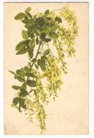 BF 48, OLD FANTASY POSTCARD , FLOWERS , MARTIN ROMMEL , MARO - Blumen