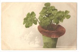 BF 49, OLD FANTASY POSTCARD , FLOWERS , MARTIN ROMMEL , MARO - Blumen