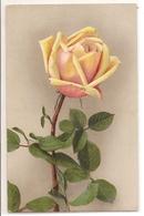BF 50, OLD FANTASY POSTCARD , FLOWERS , MARTIN ROMMEL , MARO - Blumen