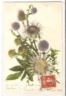 BF 51, OLD FANTASY POSTCARD , FLOWERS , MARTIN ROMMEL , MARO - Blumen