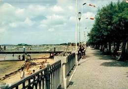 Andernos Les Bains La Promenade Et La Plage 1976  CPM Ou CPSM - Andernos-les-Bains