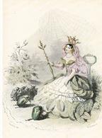 Les Fleurs Animées Illustrateur JJ Granville Lot De 4 Cartes Rose Eglantine Primevere Perce Neige Bleuet Coquelicot - Blumen