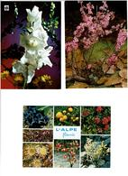 FLEURS / Lot De 90 Cartes Postales Modernes Neuves - Cartes Postales