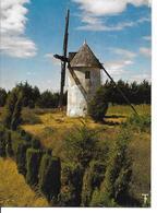 VENDEE-Moulin à Vent Près D'Angles.......MB - Autres Communes