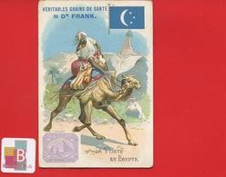 Dr FRANK FRANCK  Chromo Allemande POSTE EGYPTE CHAMEAU - Trade Cards