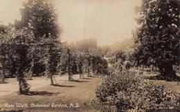 20-1491 : ROSE WALK. BOTANICAL GARDENS. - Neuseeland