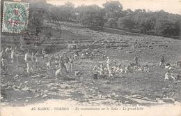 MAROC - DEBDOU - En Reconnaissance Sur La Gada - La Grand Halte - Otros