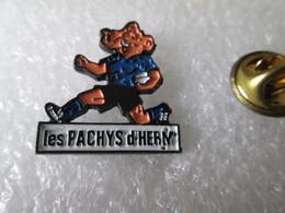 PIN'S   LES PACHYS D HERM   ELEPHANT - Animaux