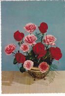 España-Centro De Rosas - Blumen