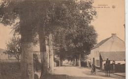 Jodoigne  ,  Chaussée De Wavre - Jodoigne