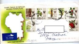 Lettre Cachet ? Sur Fruit  Arbre - Malesia (1964-...)
