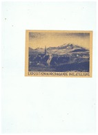 CARTE POSTALE EXPOSITION PHILATELIQUE LA MURE 31 MAI - 1er JUIN 1936 - 1921-1960: Modern Period