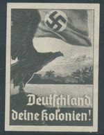 DEUTSCHLAND DEINE KOLONIEN! GERMANY YOUR COLONIES! CINDERELLA / VIGNETTE LOST TERRITORIES COLONYS Extremely Rare - Germany