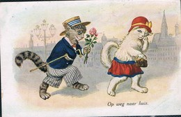 Chats Humanisé-dressed Cats -katzen - Poezen Op Wandel - Katten