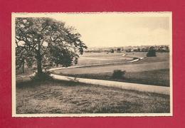 C.P. Éprave = Panorama Vu De La ROUGE  CROIX - Rochefort